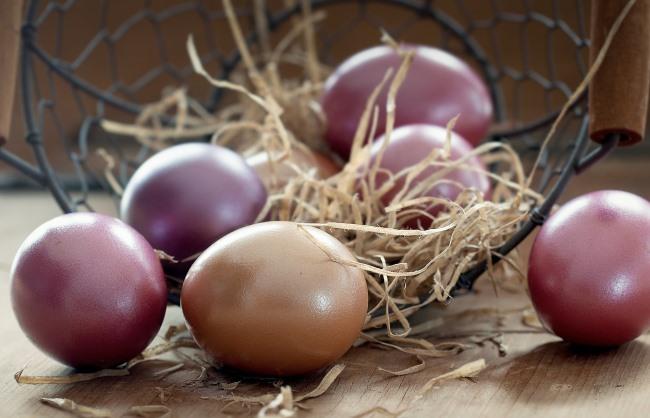 Wielkanoc na Mazurach - 5 dni - Ośrodek GAWRA